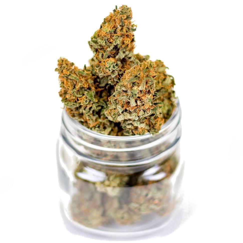 Lecznice zastosowanie marihuany